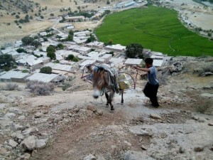 روستای شترخون ۶
