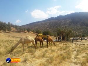 گزارش تصویری مراسم بازسازی عید غدیر خم در روستای تمنک از توابع بخش پاتاوه شهرستان دنا (۲)