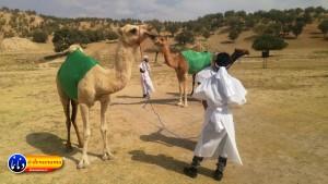 گزارش تصویری مراسم بازسازی عید غدیر خم در روستای تمنک از توابع بخش پاتاوه شهرستان دنا (۲۳۵)