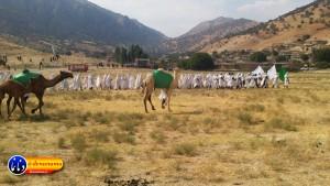 گزارش تصویری مراسم بازسازی عید غدیر خم در روستای تمنک از توابع بخش پاتاوه شهرستان دنا (۲۴۲)
