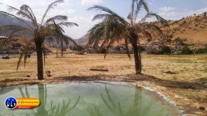 گزارش تصویری مراسم بازسازی عید غدیر خم در روستای تمنک از توابع بخش پاتاوه شهرستان دنا (۲۵۵)