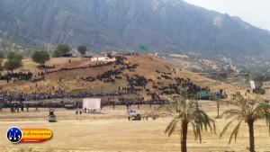 گزارش تصویری مراسم بازسازی عید غدیر خم در روستای تمنک از توابع بخش پاتاوه شهرستان دنا (۲۵۸)