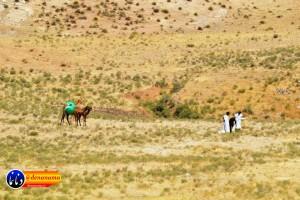 گزارش تصویری مراسم بازسازی عید غدیر خم در روستای تمنک از توابع بخش پاتاوه شهرستان دنا (۳۵۹)