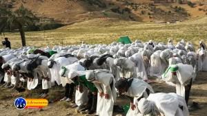 گزارش تصویری مراسم بازسازی عید غدیر خم در روستای تمنک از توابع بخش پاتاوه شهرستان دنا (۴۱)