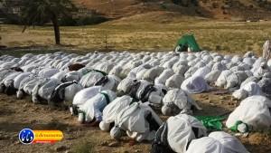 گزارش تصویری مراسم بازسازی عید غدیر خم در روستای تمنک از توابع بخش پاتاوه شهرستان دنا (۴۲)
