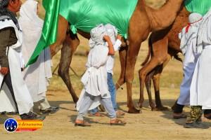 گزارش تصویری مراسم بازسازی عید غدیر خم در روستای تمنک از توابع بخش پاتاوه شهرستان دنا (۵۲۵)