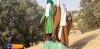 گزارش تصویری مراسم بازسازی عید غدیر خم در روستای تمنک از توابع بخش پاتاوه شهرستان دنا (۸۵)