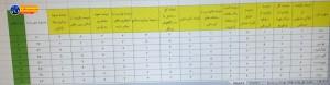 کسب رتبه اول طرح بسیج نوروزی توسط تیم بهداشت محیط شهرستان دنا (۳)